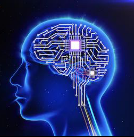 Immagine di un cervello digitale